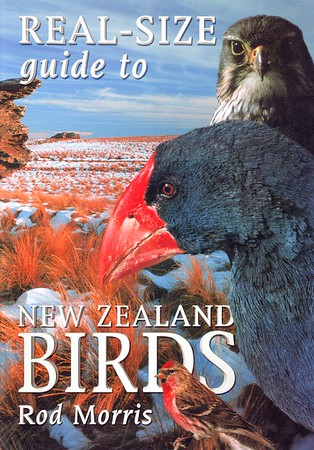 More than thirty common NZ birds feature 'real-sized' against habitat backgrounds. A colourful guide for children interested in birds, and a companion volume to LIFE-SIZE GUIDE TO NEW ZEALAND BIRDS.  RRP NZ $29.95  ISBN 978-1-86941-633-3