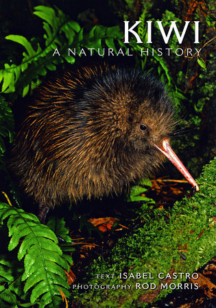 A signed copy of 'Kiwi: A Natural History' can be purchased directly from us for $29.99 (+P&P). For more information please contact the Production Manager at info@rodmorris.co.nz<br /> <br /> New Zealand's best-known bird is the subject of this new title from Dr Isabel Castro and Rod. This is the perfect introduction for anyone with an interest in these fascinating birds. All five kiwi are covered ranging from the widespread North Island brown kiwi, to the endangered little spotted kiwi. Isabel describes key aspects of kiwi, from their evolution, prehistory and closest relatives (based on the latest research) to their feeding and breeding behaviour. <br /> <br /> Featuring over 100 full-colour photographs by Rod.<br /> <br /> Dr Isabel Castro lectures in Ecology at Massey University, where she leads research programmes on North Island brown kiwi behaviour, biology and ecological relationships. She has also carried out in-depth research on the hihi or stitchbird, as well as other native birds. <br /> <br /> This is the second title in a series from New Holland on New Zealand's wildlife, targeted at a family readership. The first title was Penguins of New Zealand by Lloyd Spencer Davis and Rod.