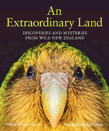 A finalist in the 2014 NZ Post Children's Book Awards. <br /> <br /> Here's what reviewer Julian Kuzma had to say…<br /> <br /> '... it is possible to become inured to ubiquitous books of New Zealand nature photography but Morris – with his dramatic and revealingly intimate portraits of birdlife in particular – is an artist at the top of the game...'<br /> <br /> This is the second book author Peter Hayden and Rod Morris have collaborated on.