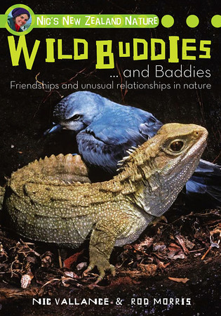 A book that encourages children to examine how we all rely on the living things around us. The second in a series of books by Nic and Rod, aimed at the 9 to 14 year-old reader.  'Buddies ...and baddies' examines unusual friendships and relationships between New Zealand's native plants and animals - from pesky parasites, through one-sided friendships, to special relationships where plants and animals both benefit from helping each other out.  RRP NZ $29.95  ISBN 978-1-86966-302-5