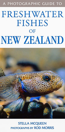 This comprehensive reference to New Zealand freshwater fishes describes all 68 known species of introduced and native freshwater fish found in New Zealand, with useful identification charts at the back for bullies and the diadromous galaxids. Written by Stella McQueen, (author of 'The New Zealand Native Freshwater Aquarium'), Stella has a postgraduate diploma in freshwater ecology from Massey University. The photography is by Rod.