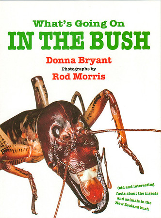 Signed copies of 'What's Going on in the Bush' can be purchased directly from us (new) for $29.99 (+P&P). For more information please contact the Production Manager at info@rodmorris.co.nz