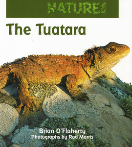 'Nature Kids: The Tuatara' is a fantastic gift for young readers (aged 5-9 years) and can be purchased directly from us for $34.99 (+P&P). For more information contact the Production Manager at info@rodmorris.co.nz