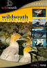 A copy of the DVD Wild South: Volume Three can be purchased directly from us for $39.99 (+P&P). For more information please contact the Production Manager at info@rodmorris.co.nz<br /> <br /> Two of the four nature stories on this disc were directed and produced by Rod back in the 1980's.<br /> <br /> Colony 'Z' - a half hour dramatised documentary about Dr Lance Richdale who studied a colony of Yellow-eyed penguins on Otago Peninsula during the war years.<br /> <br /> Song of Protest - a half hour documentary about the North Island kokako, under threat from the logging of its native forest habitat in the central North Island during the eighties. The narrative unfolds in both English and Maori, and features the beautiful music of the late, great Hirini Melbourne. It is worth noting that this documentary was selected as a finalist for its 'Best Sound and Commentary' at Wildscreen in 1986 - the judges (among them, the great English film-maker Ken Loach, and popular English author and zoologist, Desmond Morris), particularly commented on the creative use of Hirini's music.