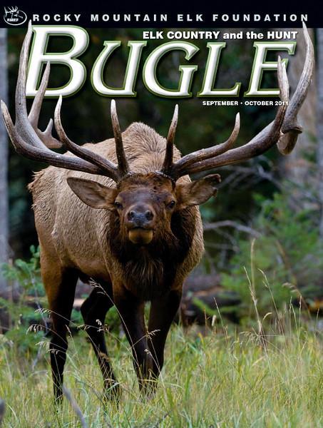 001_BugleSO11