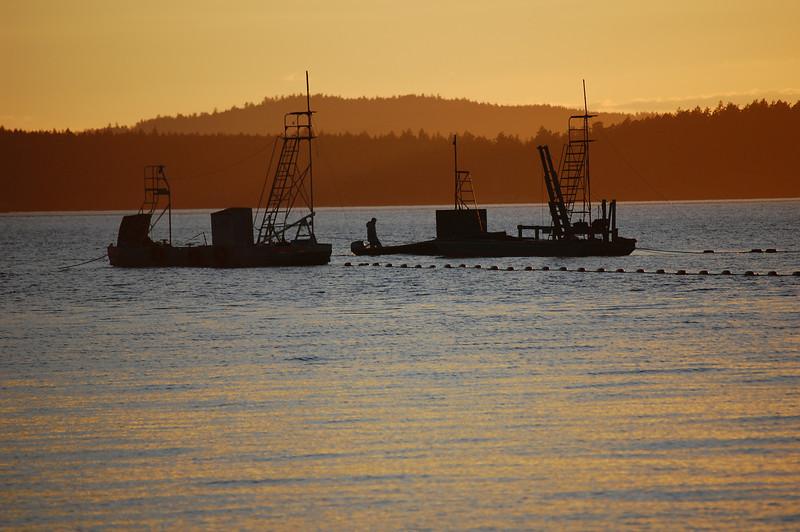 Reef Net Boats off Lopez