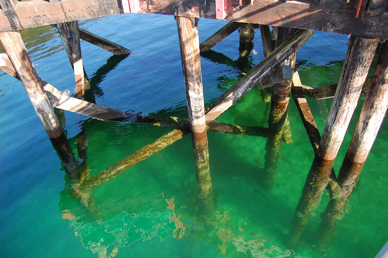 dock in Fords Cove Hornby island