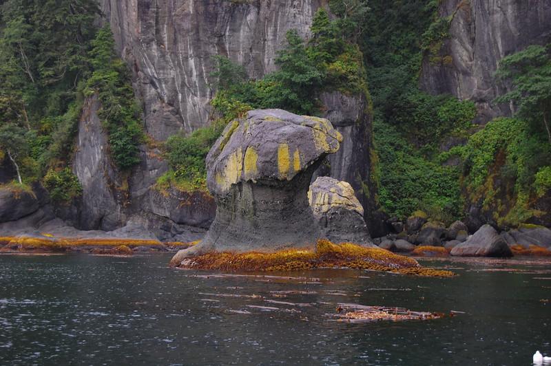 near cape flattery, mushroom rock
