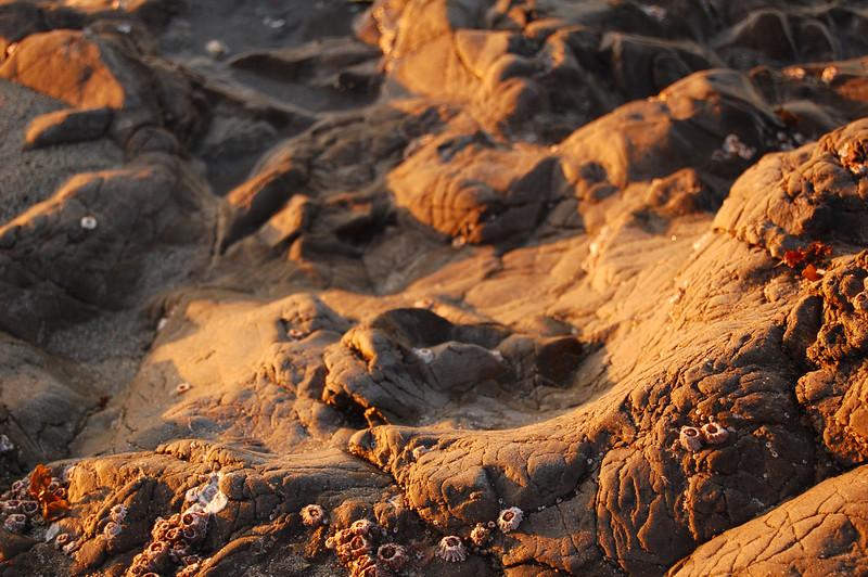 rocks on lopez