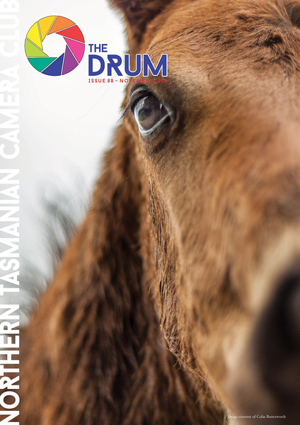 The Drum Issue 88 - November 2014