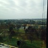 The view of Forest Park from Dave's office