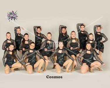 8__Cosmos_8x10