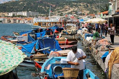 Blue tarps, blue boats, blue, blue water.