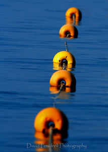 Buoys at Lake Tahoe