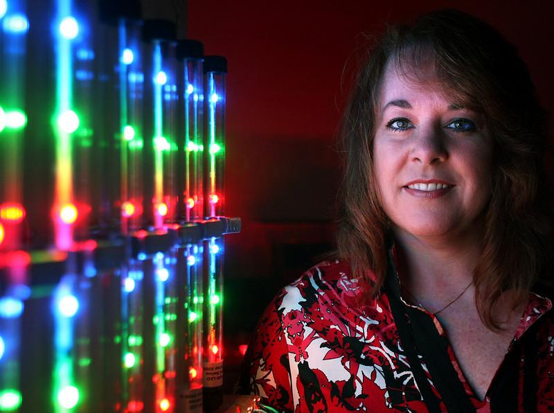 Dana Stefanoff, President of Crossroads LED's in Collinsville.