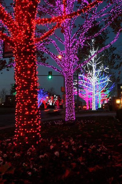 Chesapeake lights. PHOTO BY MAIKE SABOLICH
