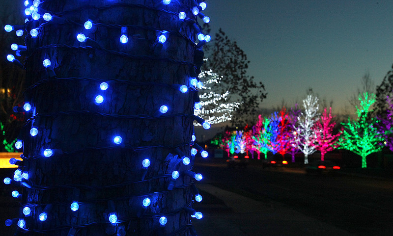 Chesapeake lights. PHOTO BY MAIKE SABOLICH