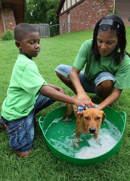 Larry Edwards and his mother Tenisha wash a dog in Tulsa. They formed a business, Mommy and Me, and have a mobile dog washing service.