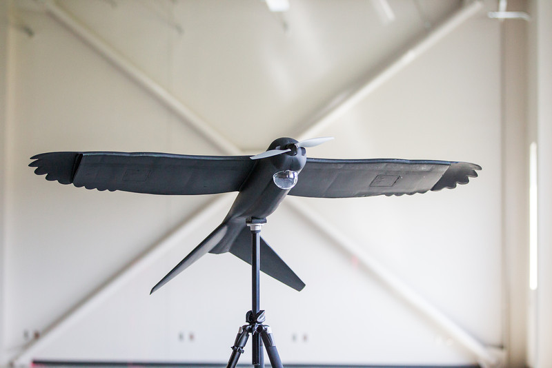 A model of a UAV by Design Intelligence Incorporated designed in cooperation with Oklahoma State University.
