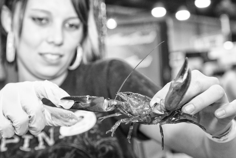 Veronica Allen with Delancey St Seafod shows fresh cray fish at the Oklahoma Returaunt Convention.