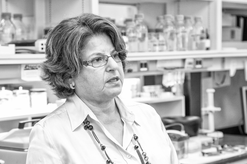 Dr Muna Naash in her lab at OU Health Science Center