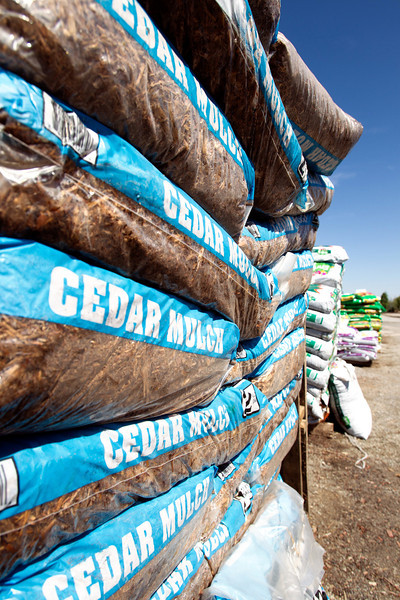 Bags of cedar mulch at TLC Nursery on Memorial in Oklahoma CIty.