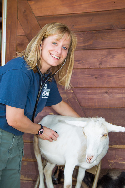 Oklahoma Cty Zoo veternarian Jennifer d'Aagostino checks on Dewey the goat.