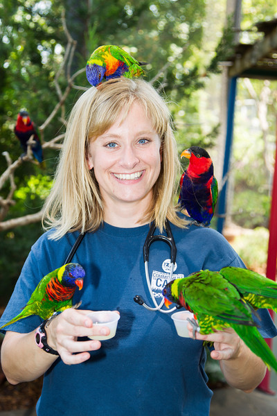 Veternarian Jennifer d'Aagostino pays a visit to the lorikeets at the Oklahoma City Zoo.