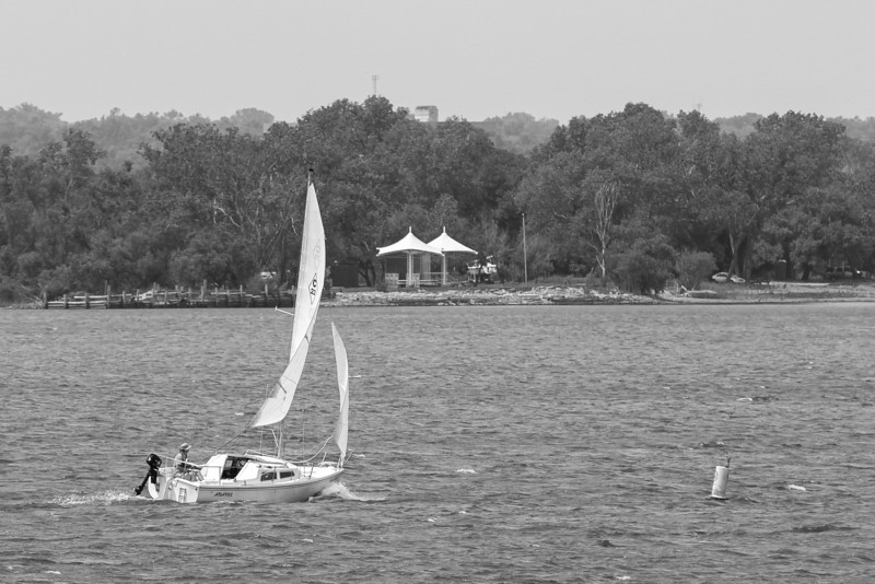 A man sets sail on a windy day at Lake Hefner.