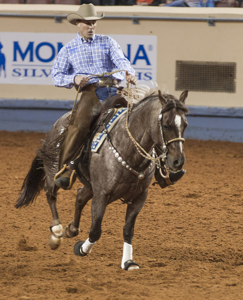 The American Quarter Horse Association wrapped up world finals at the Oklahoma State Fairgraounds November 17th.