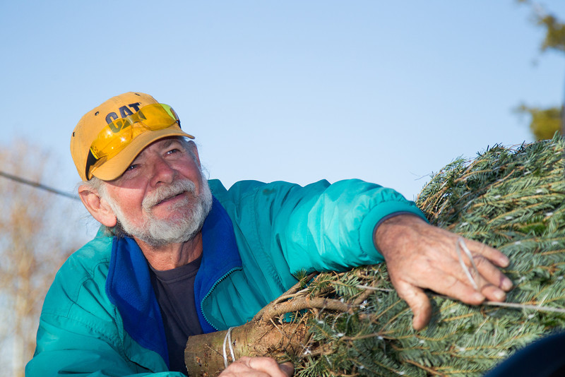 John Knight, owner of Sorgum Mill Christamas Tree Farm, helps tie a newly purchased tree to the top of a customers car.