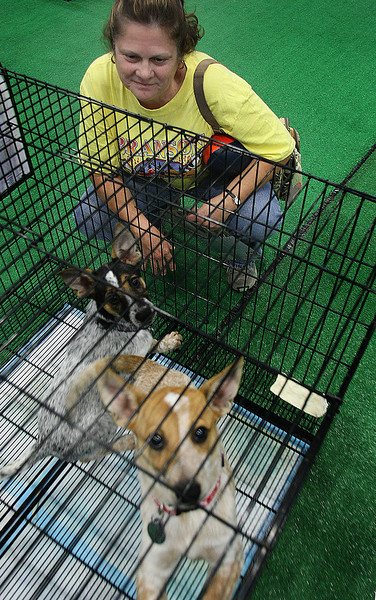 Diane Thompson admires puppies up for adoption in the Tulsa Humane Society booth at the House Beautiful Show.