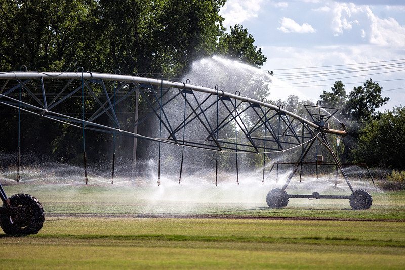 Watering at Joe's Sod Farm off I44.