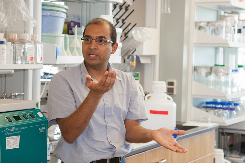 Sathish Srinivasa, Ph.d. at his new lab at OMRF.