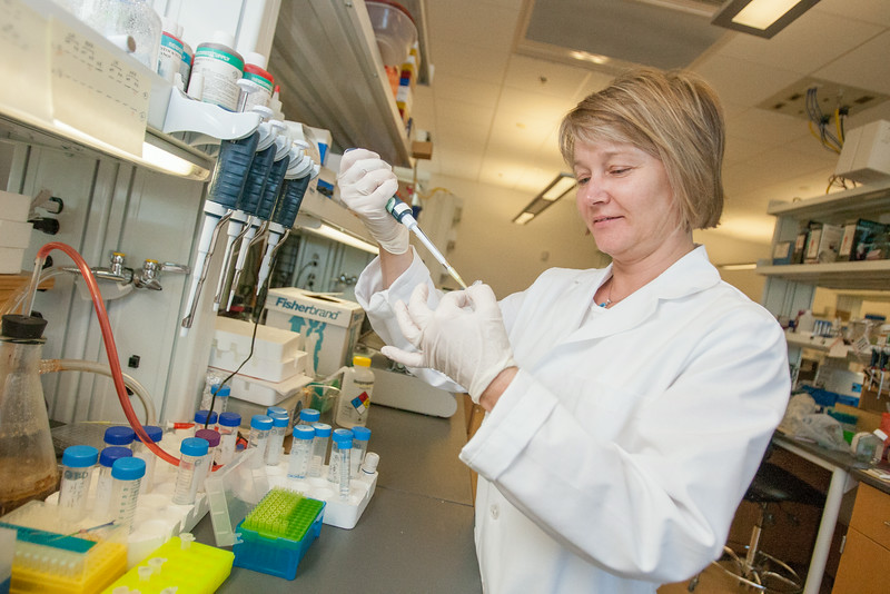 Jana Barlic-Dicen, Ph.D. in her reearch lab at Oklahoma Medical Research Foundation in Oklahoma City, OK.
