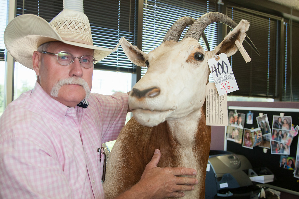 Jerry Flowers with a recovered scimitar oryx head. The animals are extinct in the wild and remains are illigal to own in Oklahoma.
