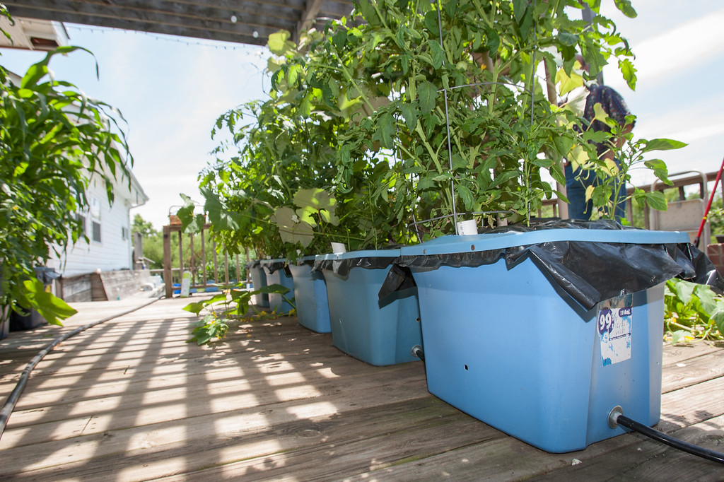 Garden Anywhere Box, invented by Larry and Loretta Pierce, allow a compact solution for home gardening.