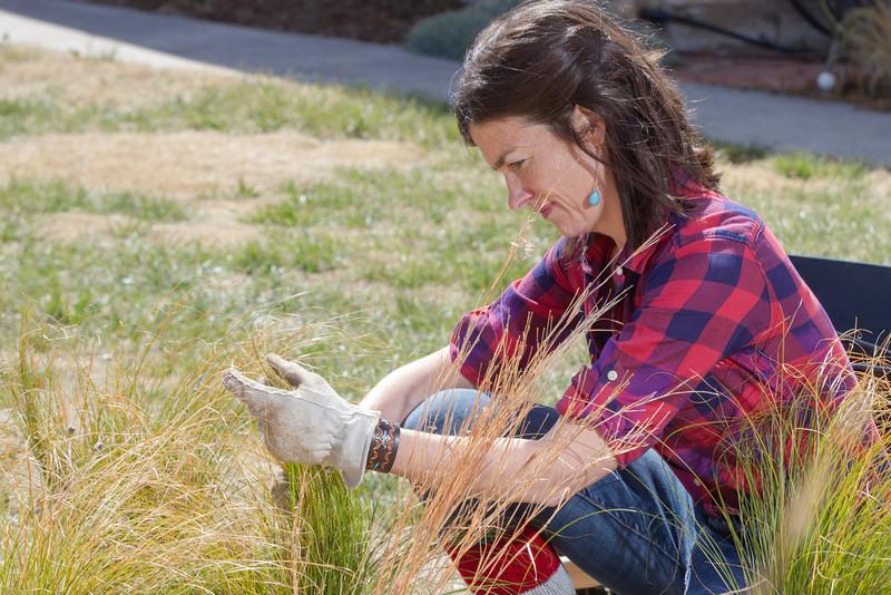 Jamie Csizmadia, owner of Olthia, Urban Prairie Garden Design.