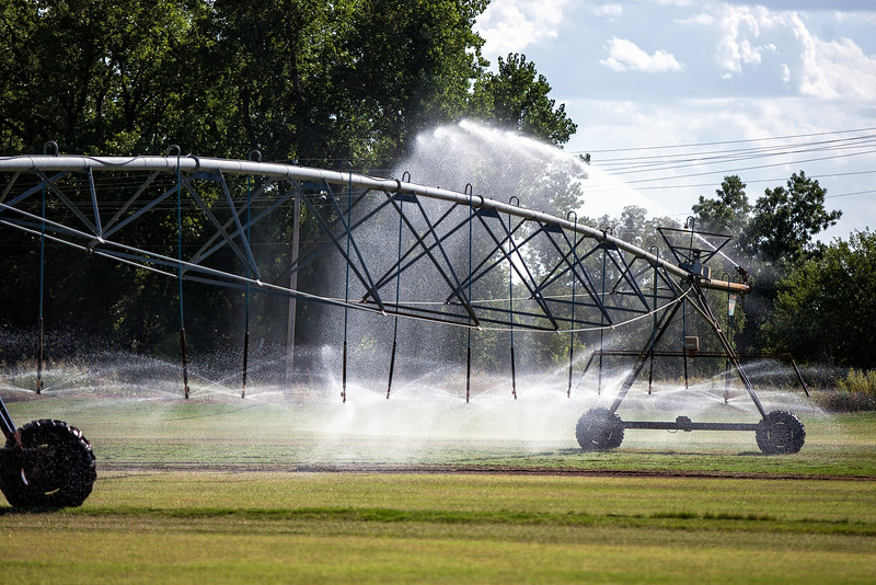 Watering at a farm in Oklahoma CIty, OK.