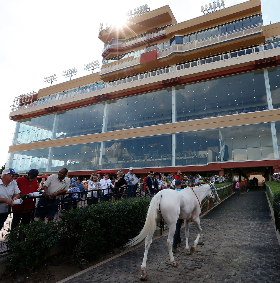 A horse is paraded into the paddock at Remington Park Sunday.