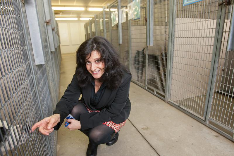 Julie Bank, Animal Welfare Superintendant for the City of Oklahoma CIty.