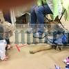 CM Fuchsia guide dog_1739