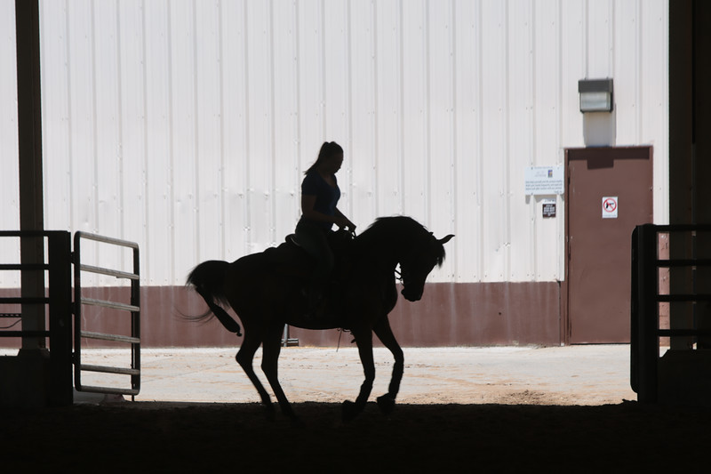 The National Youth Arabian and Half-Arabian Championship Horse Show starts this Saturday at Oklahoma State Fair Park.