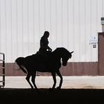 The National Youth Arabian and Half-Arabian Championship Horse Show starts this Saturday at Oklahoma State Fair Park.
