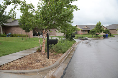 Bob Nairn has completed a study of water filtration gardens planted in eighteen homes in the Trail Woods neighborhood in Norman, OK.