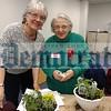 04 03 17 herb garden