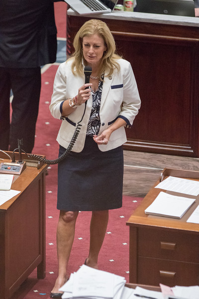 Oklahoma State Senator Kim David during debate of HB2360  on the floor of the Oklahoma State Senate.