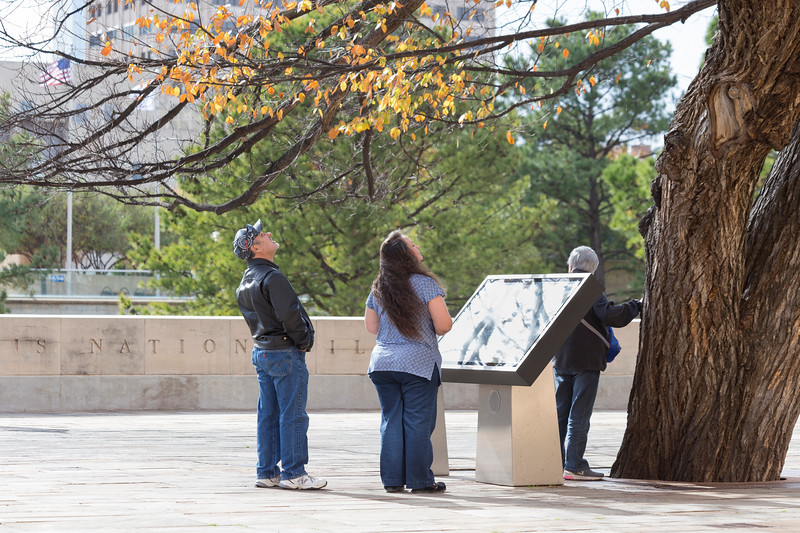 John Arambula and Linda Arambula gaze at the Survivor Tree at the Oklahoma Bombing Memorial Park on Tuesday, November 21, 2017 in Oklahoma City. (Emmy Verdin/Photographer)