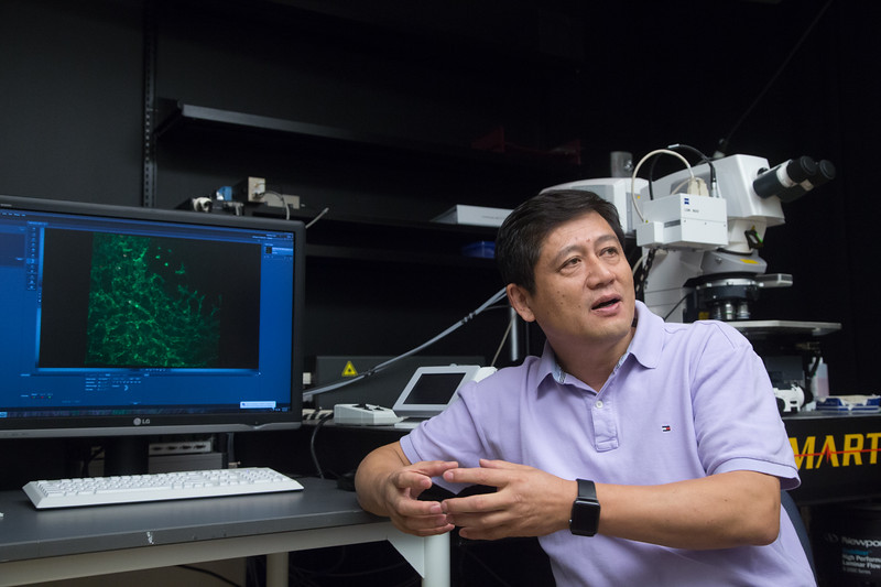 Dr. Lijun Xia points to red platelets on the computer screen amid a mass of green blood vessels, both of which have been dyed so researchers can identify those structures. The images taken by the microscope are similar to what Xia and his staff at the Oklahoma Medical Research Foundation have been researching for a study that identified new genes for a bleeding condition.