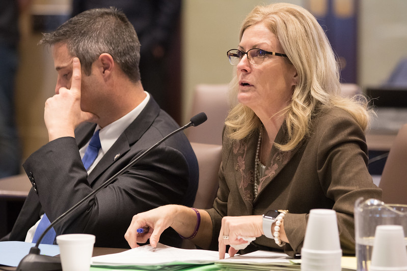 Oklahoma State Senator Kim David introduced legislation in Senate Comittee on Health and Human Services that would allow the governer to budget officers to the Oklahoma State Department of Health.
